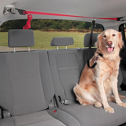 Solvit® PupZip Vehicle Zipline