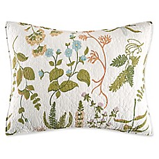 image of C&F Enterprises, Inc. Anessa Standard Pillow Sham in Green