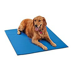 image of Pawslife™ Cool Pad in Blue