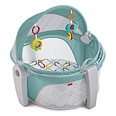 image of Fisher-Price® On-the-Go Baby Dome