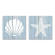 Coastal Shells 14 Inch Square Printed Canvas Art (Set Of 2)