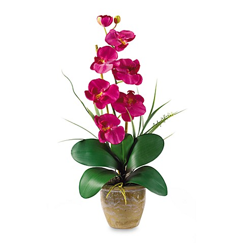 Nearly Natural Phalaenopsis Orchid Silk Flower Arrangement in Beauty  Bed Bath \u0026 Beyond