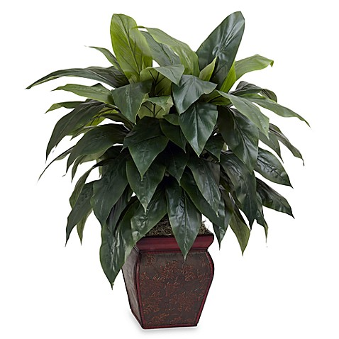 Nearly Natural Cordyline w/ Decorative Vase Silk Plant