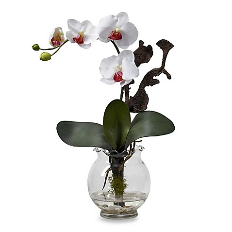 Nearly Natural Mini Phalaenopsis with Fluted Vase Silk Flower Arrangement - White