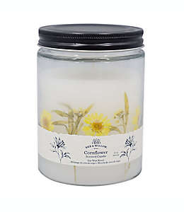 Vela en vaso Bee & Willow™ Home Spring Cornflower™ de 425.24 g