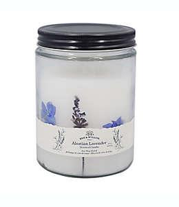 Vela en vaso Bee & Willow™ Home Spring Alsatian Lavender™ de 425.24 g