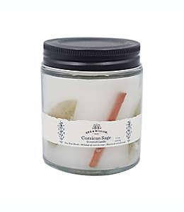 Vela en vaso Bee & Willow™ Home Spring Corscian Sage™ de 218.29 g