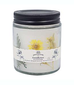 Vela en vaso Bee & Willow™ Home Spring Cornflower™ de 218.29 g