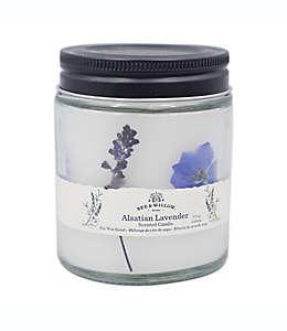 Vela en vaso Bee & Willow™ Home Spring Alsatian Lavender™ de 218.29 g