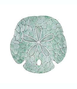 Adorno para pared de galleta de mar en verde espuma