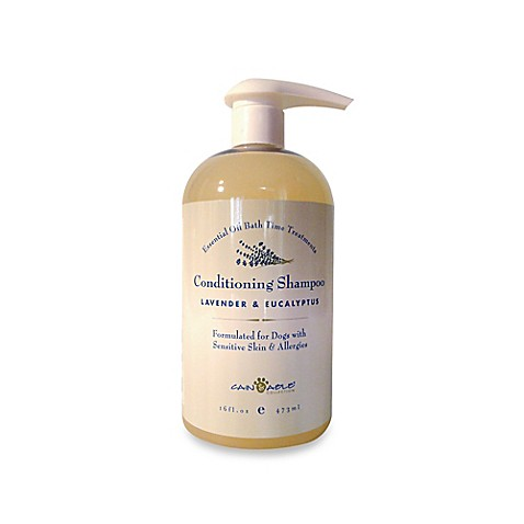 buy cain able lavender and eucalyptus 14 oz shampoo from bed bath beyond. Black Bedroom Furniture Sets. Home Design Ideas