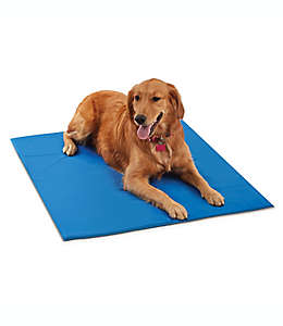 Tapete refrescante mediano Pawslife® para perros en azul