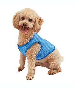 Pawslife Chaleco refrescante chico para mascotas en azul