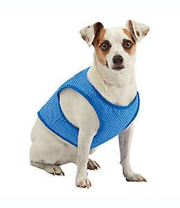 Chaleco refrescante mediano para mascotas Pawslife en azul