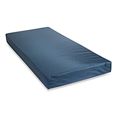 Therapeutic Air Mattress Bed Bath And Beyond