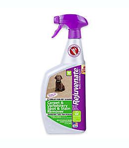 Removedor ecológico de manchas de alfombras y tapicería, Rejuvenate® 946.35 mL