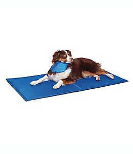 Tapete refrescante grande para perros Pawslife™ en azul