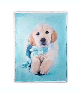 Frazada reversible Jupiter Rachael Hale® con estampado de perro en azul