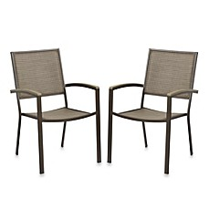 Resin Wood Dining Chairs Set Of 2