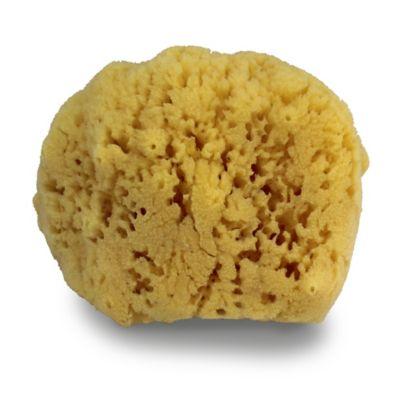 mesa bath sponge | Bed Bath & Beyond