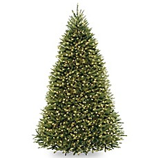 image of national tree dunhill fir pre lit christmas tree with multicolor lights - Pre Lit Christmas Trees