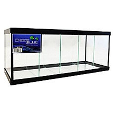 image of Deep Blue Professional 2.3-Gallon 5-Way Betta Tank with Black Frame