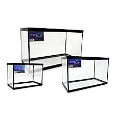 image of Deep Blue Professional Fish Tank with Black Frame