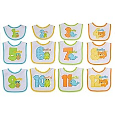 image of Neat Solutions® 12-Piece Monthly Milestone Bib Set in Neutral