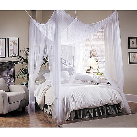Majesty white large bed canopy bed bath beyond - Pictures of canopy beds ...