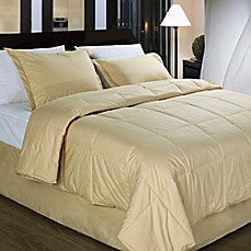 image of Cotton Dream Colors All Natural Cotton Filled Comforter