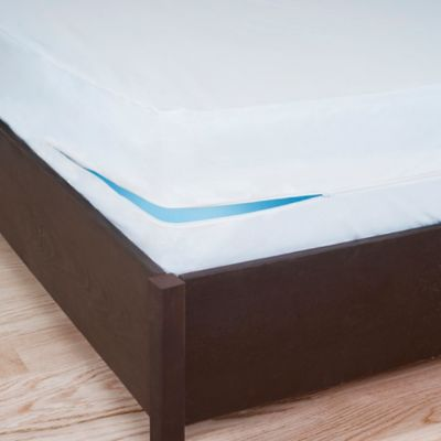 Remedy Bed Bug Dust Mite Box Spring Protector in White Bed Bath