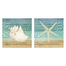 image of starfishshell 16 inch x 16 inch embellished canvas wall art - Coastal Wall Decor