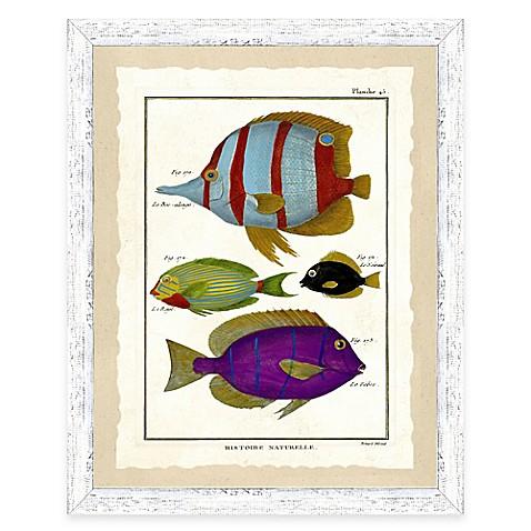 Buy school of fish print i framed wall art from bed bath for School of fish wall art