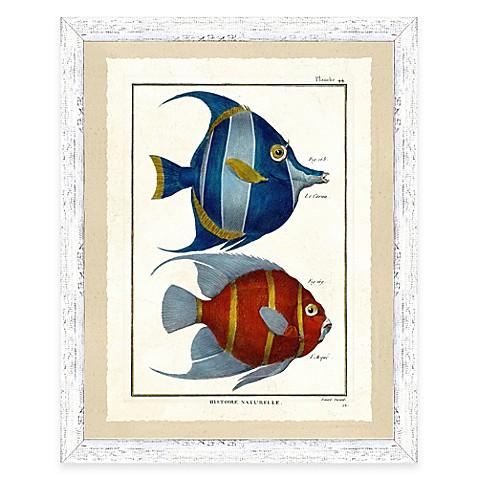 School of fish print iii framed wall art bed bath beyond for School of fish wall art