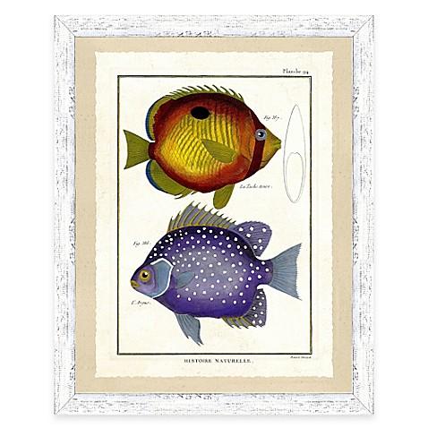 Buy school of fish print vi framed wall art from bed bath for School of fish wall art
