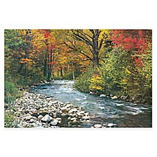 Image Of Forest Creek Photographic Canvas Wall Art