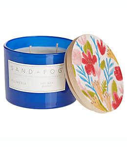 Vela en vaso de vidrio Sand + Fog® Plumeria con tapa de madera decorada, 340.19 g