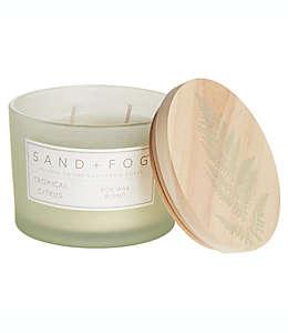 Vela en vaso de vidrio Sand + Fog® Tropical Citrus con tapa de madera decorada, 340.19 g