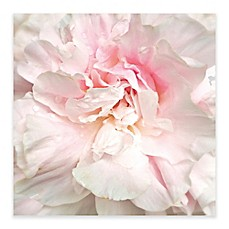 Image Of Power Puff Peony Canvas Wall Art