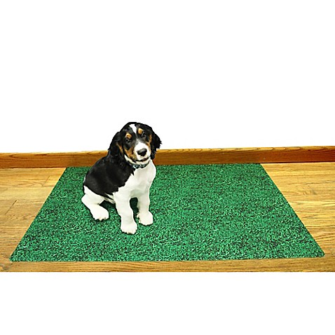 Absorbent Training Pads For Large Dogs