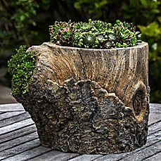 image of Campania Walnut Planter in Natural Bark