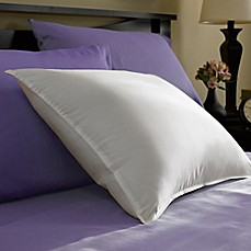 Year Round Down Pillow In White