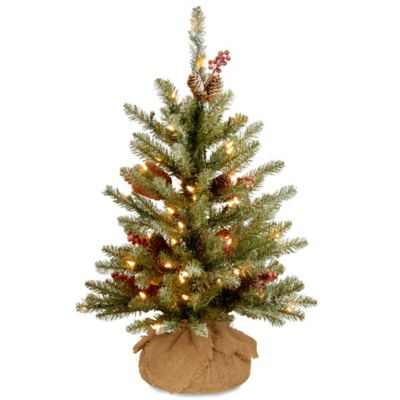 Image Of National Tree 2 Foot Dunhill Fir Pre Lit Burlap Artificial Christmas  Tree