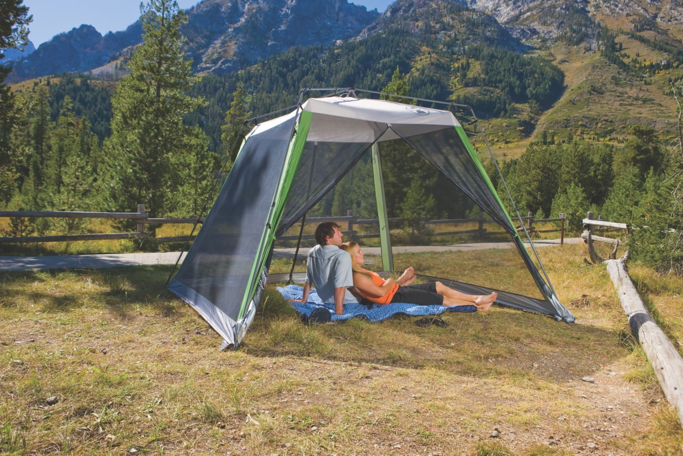Screened Canopy · 10 ft. x 10 ft.  sc 1 st  Coleman & Coleman® 10 ft. x 10 ft. Instant Screened Canopy