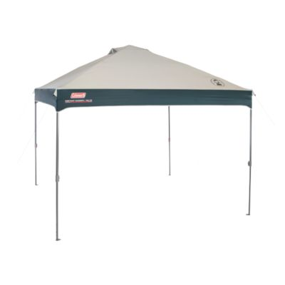 10 x 10 Instant Canopy
