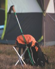 Coleman® Trekking Pole
