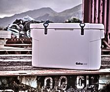 Learn about the extreme durability of Esky coolers