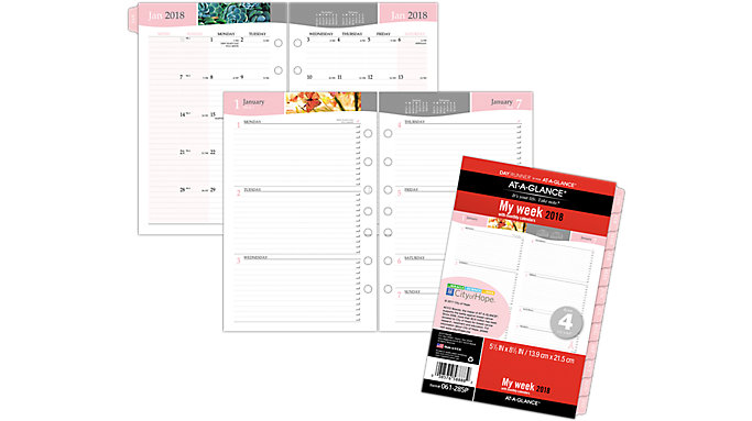 AT-A-GLANCE Day Runner Special Edition Weekly-Monthly Planner Refill Size 4  (061-285P)