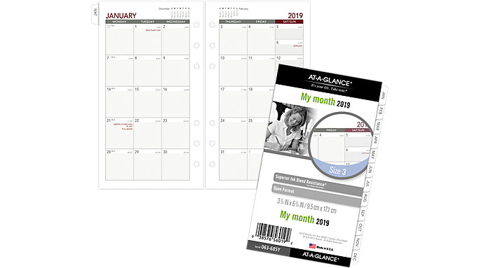 AT-A-GLANCE Day Runner Monthly Planner Refill Size 3  (063-685Y)