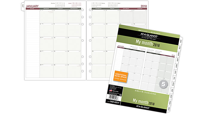 AT-A-GLANCE Day Runner Monthly Planner Refill Size 5  (068-685Y)